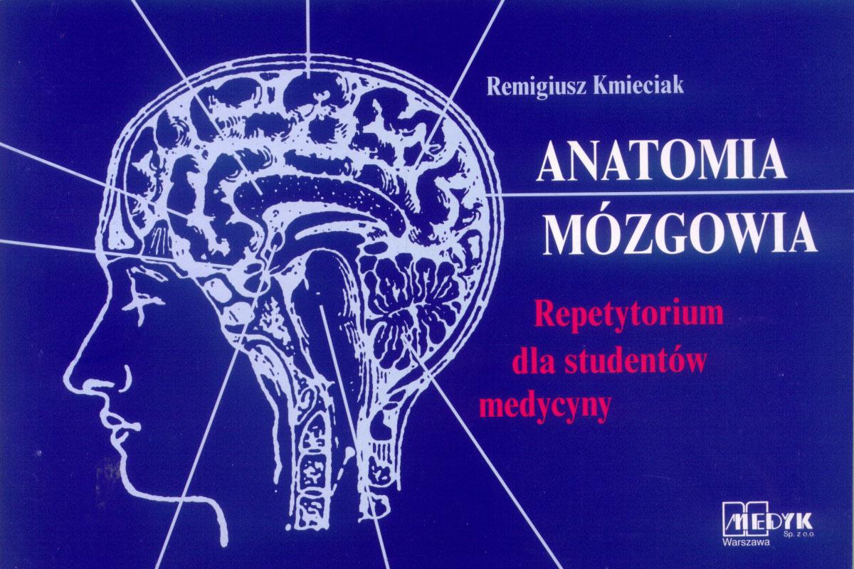 Anatomia Mózgowia